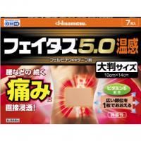 久光制药Hisamitsu 关节肌肉消炎镇痛 温感大贴5.0膏药: 7枚【2類】