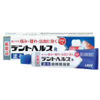 狮王齿槽脓漏药 40g