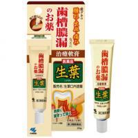 日本小林制药 生叶牙周护理 改善齿槽脓漏外用啧哩20g