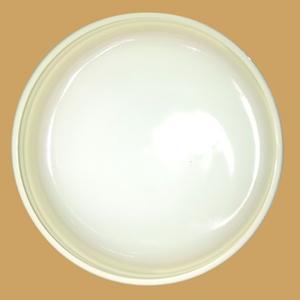 10% Salicylic Acid Ointment TOHO : 500g