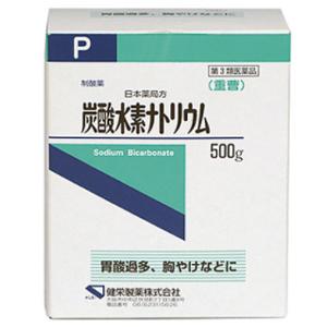 炭酸水素ナトリウム:500g