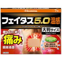 ■フェイタス5.0温感大判:14枚入