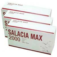 サラシアマックス2000:90袋×3個入