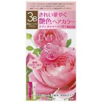 EVITA(エビータ)トリートメントヘアカラー 3B(明るいライトブラウン):45g+45g入