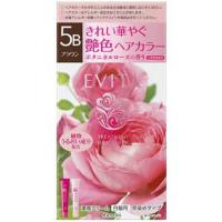 EVITA(エビータ)トリートメントヘアカラー 5B(ブラウン):45g+45g入
