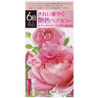 EVITA(エビータ)トリートメントヘアカラー 6B(ダークブラウン):45g+45g入