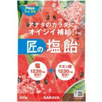 匠の塩飴 スイカ味:100g入(賞味期限:2021年3月20日)
