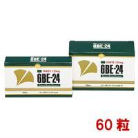 GBE-24(ジィ・ビィ・イー24)FORTE 120mg:60粒入