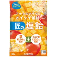 匠の塩飴 マンゴー味:100g(賞味期限:2021年3月12日)