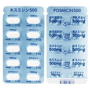 500 ホスミシン