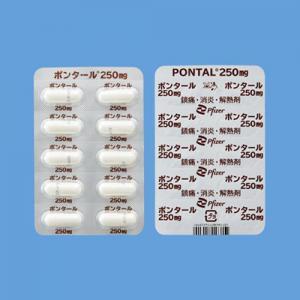 ポンタールカプセル250mg:100カプセル(PTP)