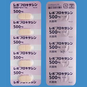 レボフロキサシン錠500mg「トーワ」 20錠