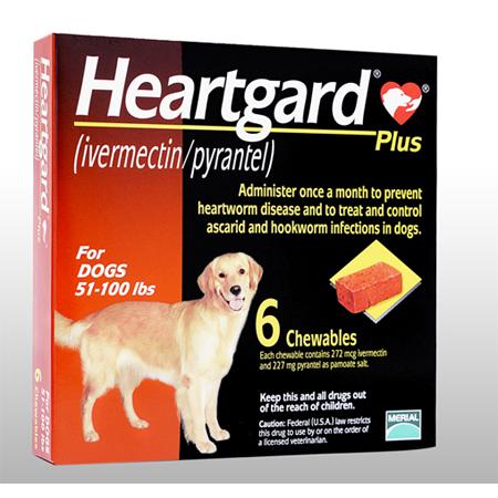 HeartGardPlus(23kg〜46kg用)6個 2箱