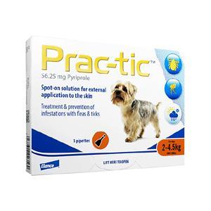 プラクティック56.25mg超小型犬用(2-4.5kg)(ENG)3本 1箱