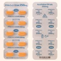 アザルフィジンEN錠250mg 100錠(PTP)