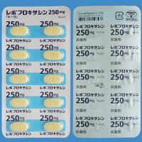 レボフロキサシン錠250mg「トーワ」 10錠×2シート