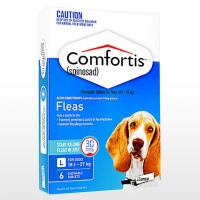コンフォティス810mg中型犬用6錠 1箱