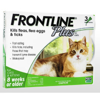 FrontlinePlusForCat6本 1箱