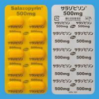 サラゾピリン錠500mg 100錠(PTP)