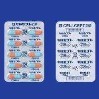 セルセプトカプセル250 10カプセル(10カプセル×1)(使用期限:2021年2月)