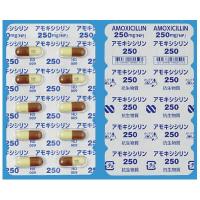 アモキシシリンカプセル250mg「NP」 100カプセル(PTP)
